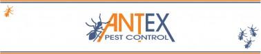 Antex-Pest-Control-378x79