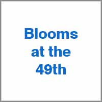 _blooms_atthe_49th